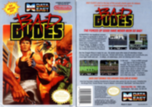 bad dudes vs dragon ninja data east nintendo entertanment system review retrogamegeeks rgg nes ntsc box art
