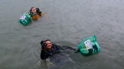limpeza dos mares golfinhos 2