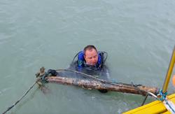 limpeza dos mares golfinhos 1