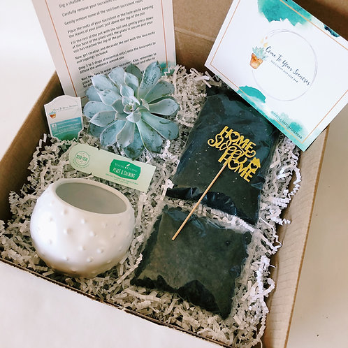 Home Sweet Home DIY Succulent Diffuser Gift Box