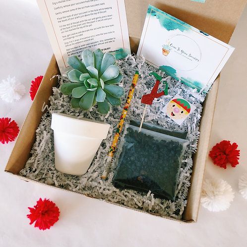 Elf in the Pot | DIY Succulent Diffuser Gift Box