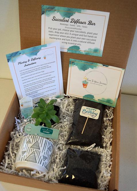 Happy Birthday | DIY Succulent Diffuser Gift Box