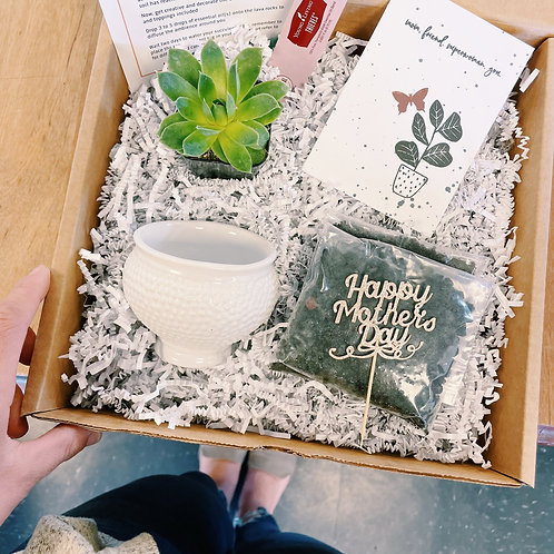 Best Mom | DIY Succulent Diffuser Gift Box