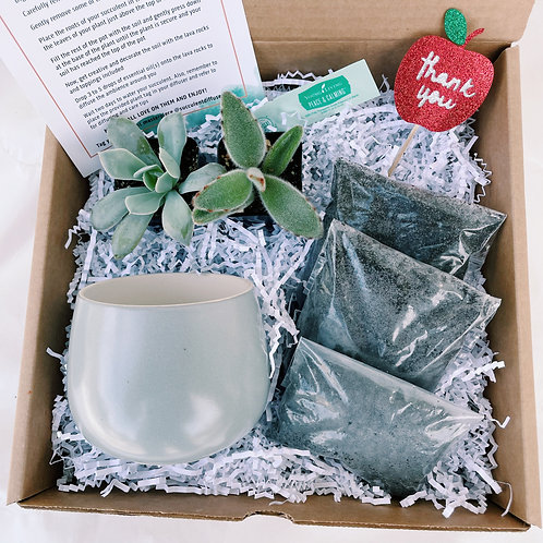 Teacher Appreciation #2 | DIY Succulent Diffuser Gift Box