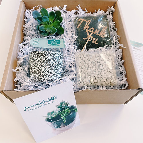 You are unbeleafable... | DIY Succulent Diffuser Gift Box