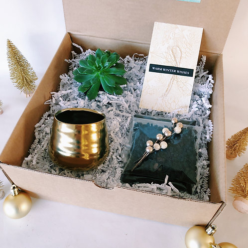 Warm Winter Wishes | DIY Succulent Diffuser Gift Box