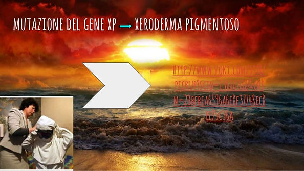 xeroderma-pigmentoso-mutazione-dna-benuc