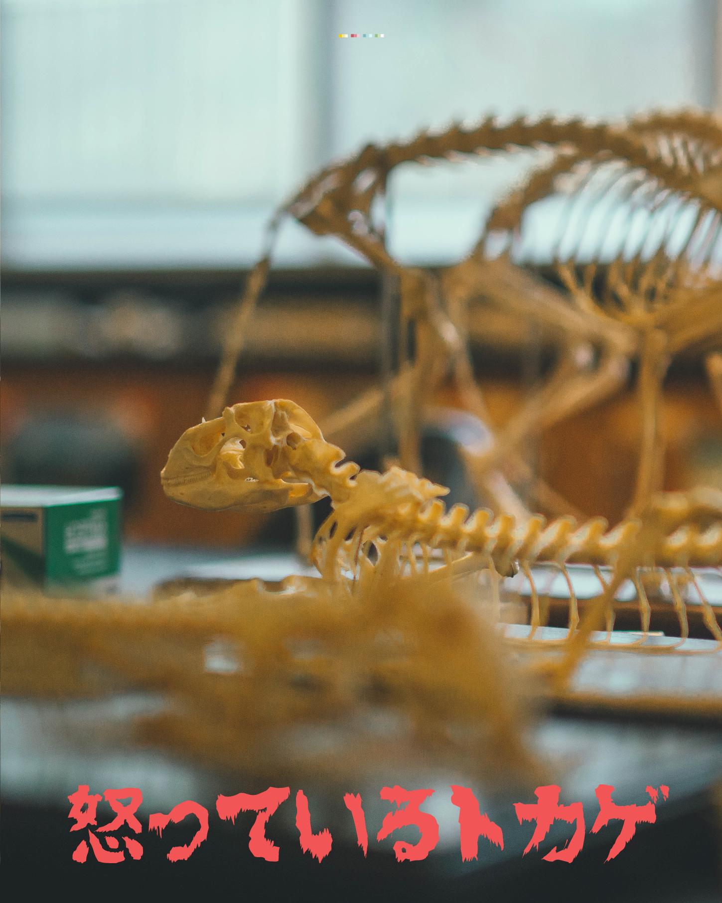 japanese-horror-shark_2.png
