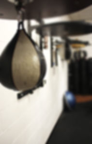 AMAA_Speed Bags_375x.jpg