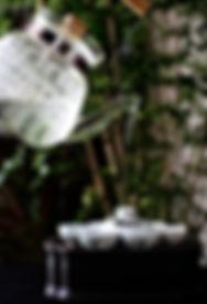 エコ茶会茶席Card100-2 IMG_0119 .jpg