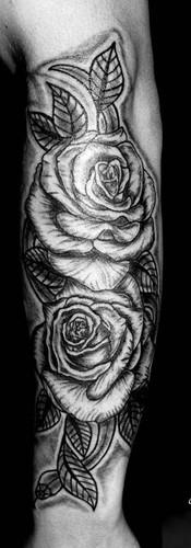 Roses & snake