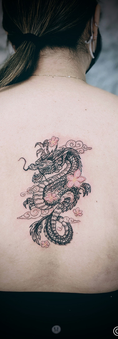 Dragon with Cherry Blossoms