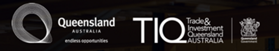 TIQ BANNER.png