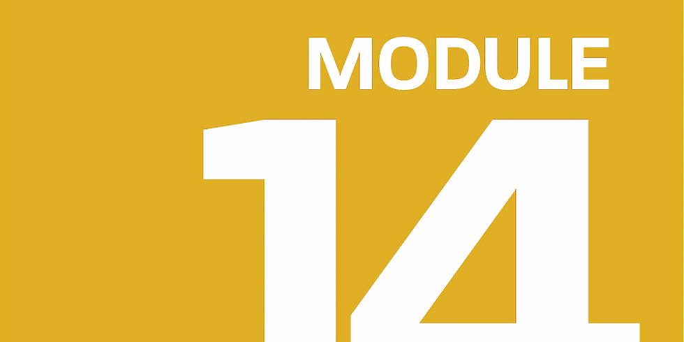 Module 14: Bonus Content/ Where to Next?