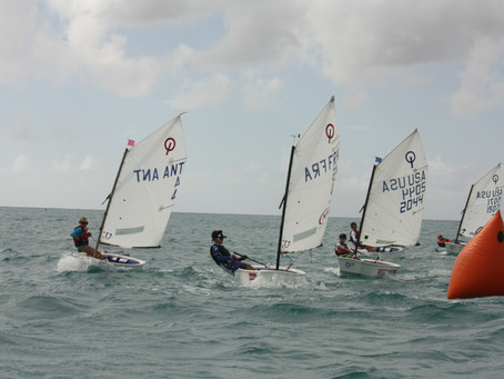 Outstanding number of entries for upcoming Sol St Maarten Optimist Championship