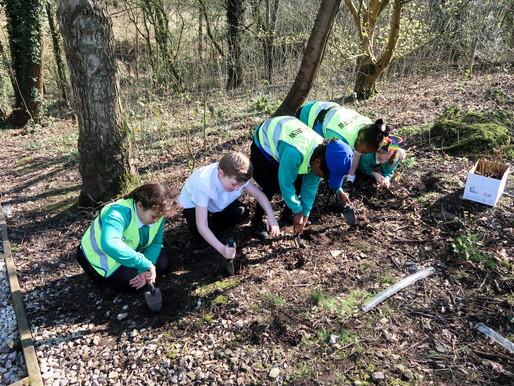 Urban Crew visit Forest School!