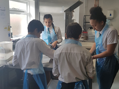 Skills and Apprenticeship Show