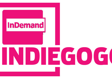 We Are InDemand On Indiegogo!