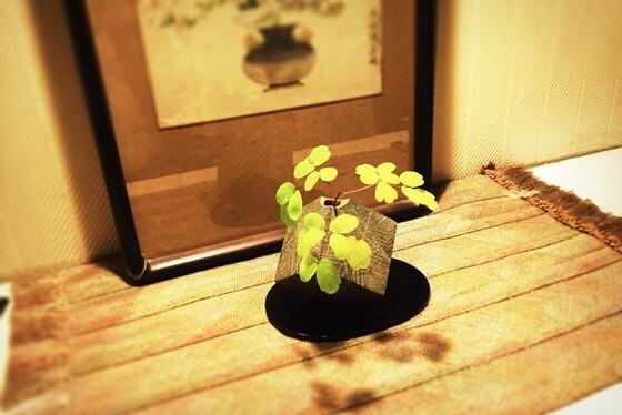 奈良のいけばな教室レポートと3分で学ぶ花 【奈良 第9回いけばなを楽しむ会 奈良女子大学 梅】