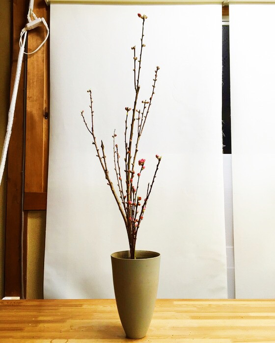 奈良のいけばな教室レポートと3分でわかる花 【奈良 高の原 日本料理おばな オクラレルカ】