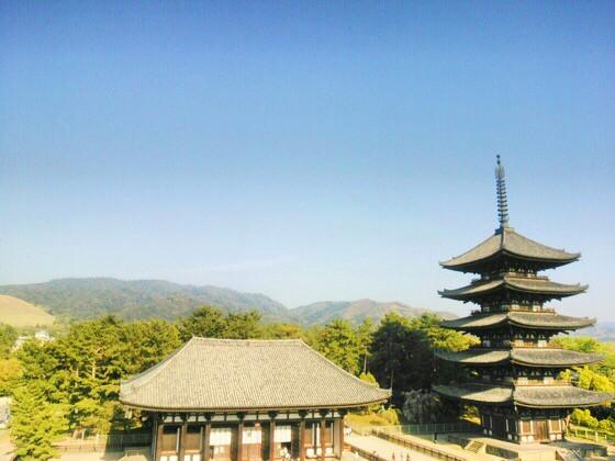 奈良のいけばな教室 もしあなたがGW前半に奈良に来るなら知っておきたい-見頃の奈良の風景-