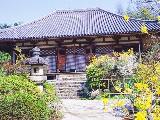 奈良のいけばな教室 連翹 不退寺
