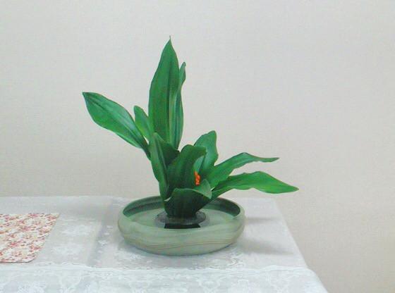 奈良のいけばな教室 正月の花