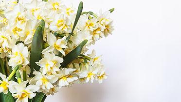 黄色と白の花と広島市民葬儀