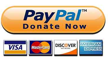 FAVPNG_donation-image-paypal_39jZrndD.pn