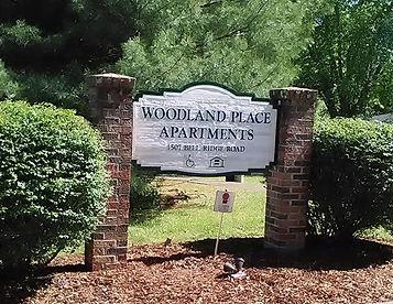 woodland2_edited.jpg