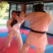 Kick-Jitsu training