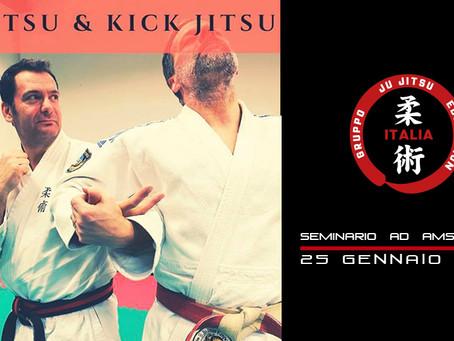 Ju Jitsu & Kick Jitsu Seminar