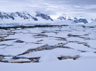 Banquise Antarctique