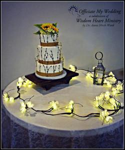 Mark and Melinda's Wedding Cake