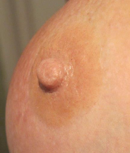 Natural 5mm Prosthetic Nipples