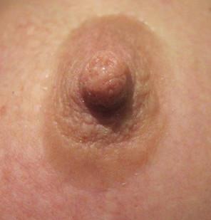 Bold 7mm Blush Prosthetic Nipples
