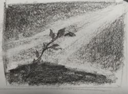 1-Thumbnail Sketch