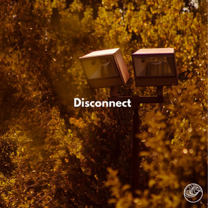 Disconnect (Single)