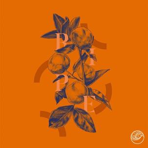 Ripe (Single)