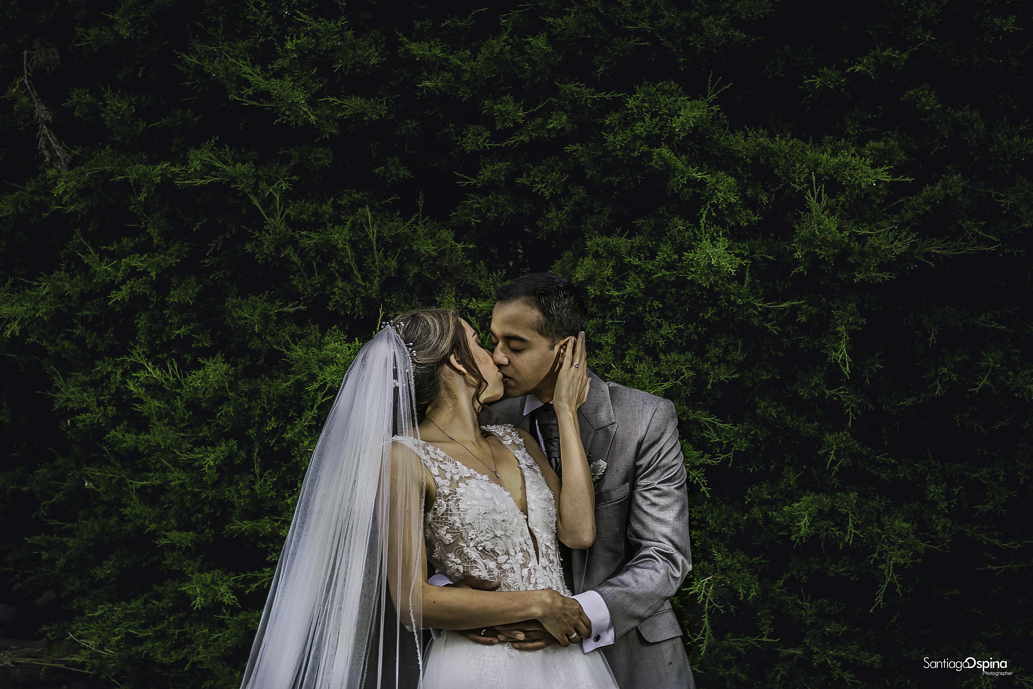 art 1 01 ex 1 D Y J matrimonio, boda bog
