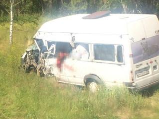 В Омском районе произошла крупная авария, жертвой которой стал пассажир микроавтобуса. Ещё четверо г