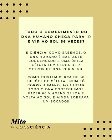 mito ou consciencia 5, pag2.png
