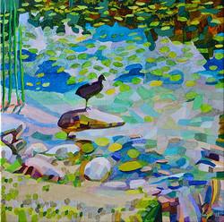Duck Pond 32, 54 x 54 cm, olja