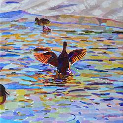 Duck Pond 19, 54 x 54 cm, olja