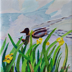 Duck Pond 31, 20 x 20 cm, olja