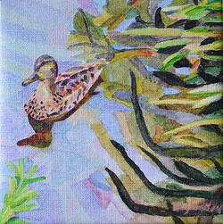 Duck Pond 24, 20 x 20 cm, olja