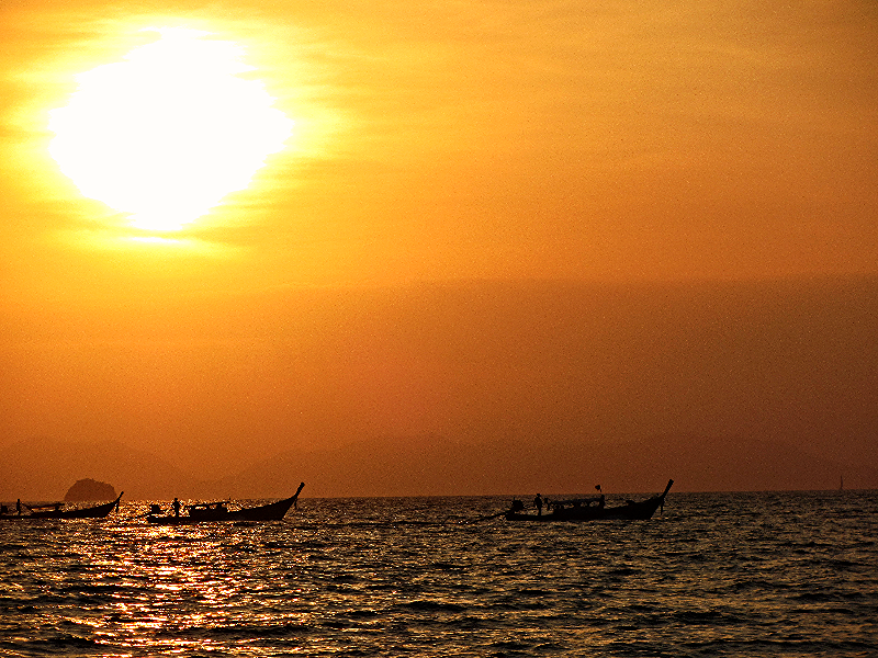 Longtails at sunset