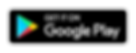 GOOGLE - WEBSITE.png