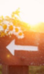 arrow-direction-field-flowers-Favim.com-