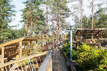 ландшафтный дизайн санкт-петербург фото
